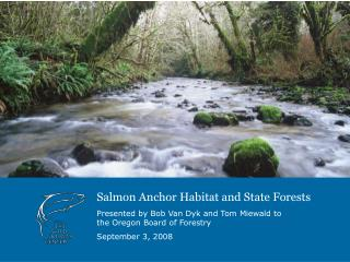 Salmon Anchor Habitat and State Forests