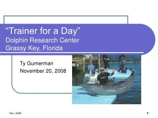 """""""Trainer for a Day"""" Dolphin Research Center Grassy Key, Florida"""