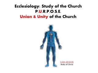 1 Cor. 12:12-31 Body of Christ