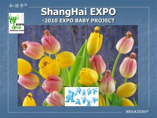 ShangHai EXPO -2010 EXPO BABY PROJECT