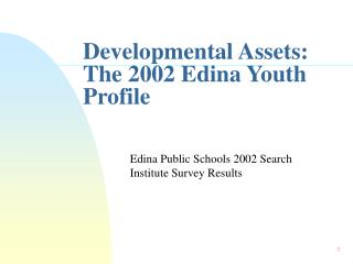 Developmental Assets: The 2002 Edina Youth Profile