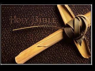 John 12.12-15