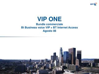 VIP ONE  Bundle commerciale  Bt Business voice VIP + BT Internet Access Agosto 08