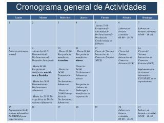 Cronograma g eneral de Actividades