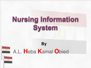 Nursing Information System