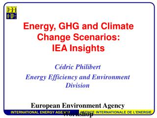 Energy, GHG and Climate Change Scenarios:  IEA Insights
