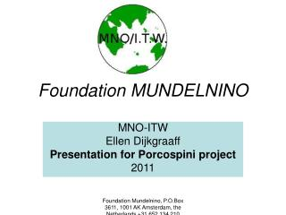 Foundation MUNDELNINO