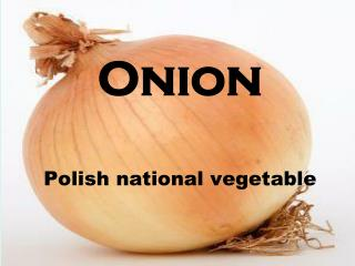 Onion Polish national vegetable