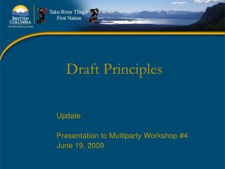 Draft Principles
