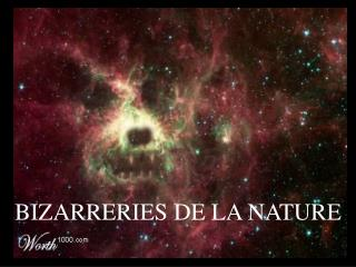 BIZARRERIES DE LA NATURE
