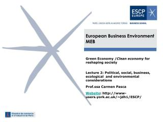 European Business Environment MEB