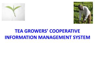 TEA GROWERS' COOPERATIVE INFORMATION MANAGEMENT SYSTEM