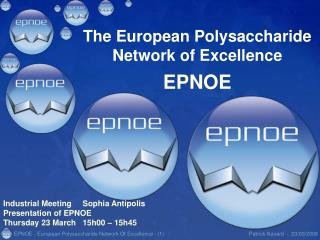 The European Polysaccharide Network of Excellence EPNOE