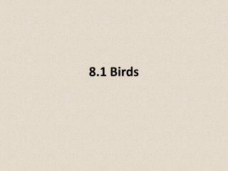8.1 Birds
