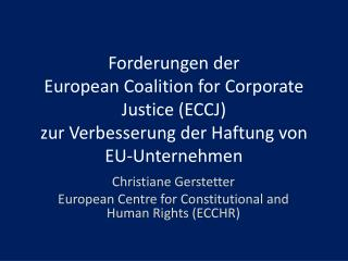 Christiane  Gerstetter European  Centre for  Constitutional  and  Human  Rights  (ECCHR)