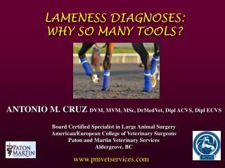 LAMENESS DIAGNOSES:  WHY SO MANY TOOLS?