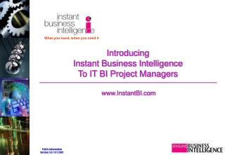 Introducing  Instant Business Intelligence To IT BI Project Managers