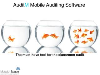 The must-have tool for the classroom audit