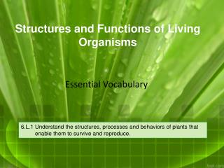 Structures and Functions of Living Organisms