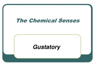 The Chemical Senses
