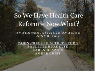 WV Summer Institute on Aging June 8, 2011  Cabin Creek Health Systems Paulette Burdette