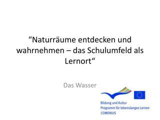 """"""" Naturr äume entdecken und wahrnehmen – das Schulumfeld als Lernort"""""""