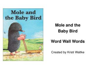 Mole and the  Baby Bird Word Wall Words Created by Kristi Waltke