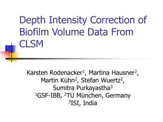 Depth Intensity Correction of Biofilm Volume Data From CLSM