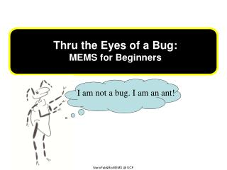 T hru the Eyes of a Bug : MEMS for  Beginners