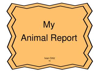 My  Animal Report