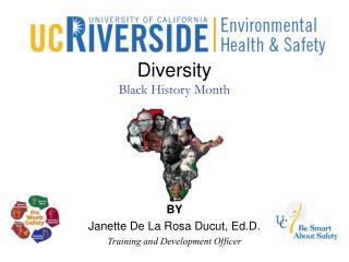 Diversity Black History Month