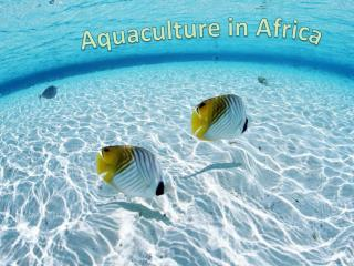 Aquaculture in Africa