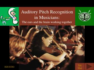 Auditory Pitch Recognition in Musicians: The ears and the brain working together