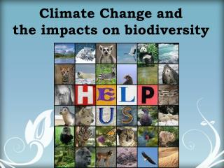 Climate Change and the impacts on biodiversity