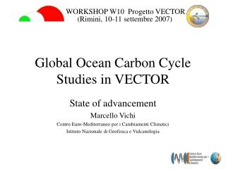 Global Ocean Carbon Cycle Studies in VECTOR