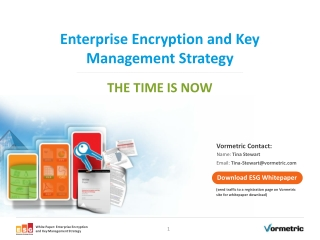 Enterprise Encryption and Key Management Strategy -Vormetric
