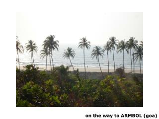 on the way to ARMBOL (goa)
