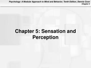 Chapter 5: Sensation and Perception