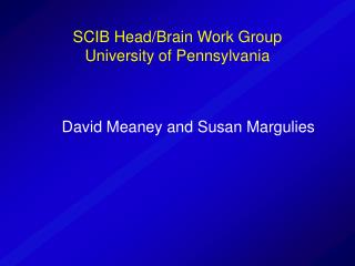 SCIB Head/Brain Work Group University of Pennsylvania