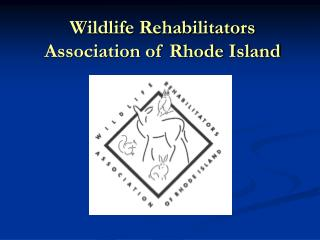 Wildlife Rehabilitators Association of Rhode Island