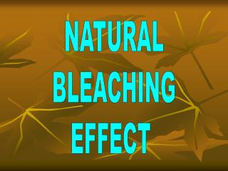 NATURAL  BLEACHING  EFFECT