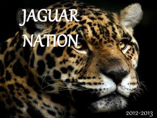 JAGUAR NATION
