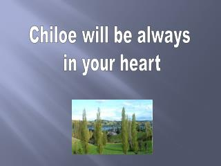 Chiloe will be always  in your heart