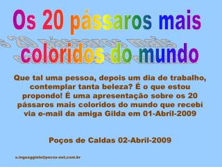 Os 20 pássaros mais  coloridos do mundo