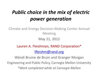 Public choice in the mix of electric power generation