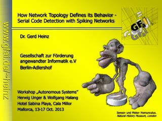 How Network Topology Defines its Behavior - Serial Code Detection with Spiking Networks