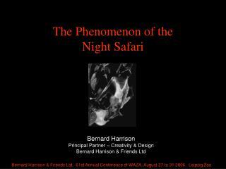 The Phenomenon of the Night Safari