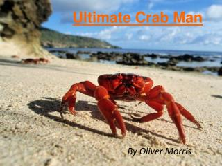 Ultimate Crab Man