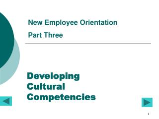 Developing  Cultural  Competencies
