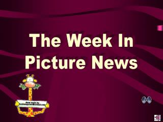 The Week In Picture News